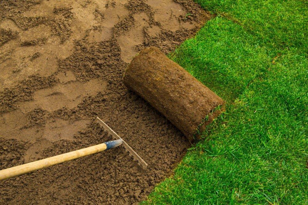 Lav en flot græsplæne med rullegræs