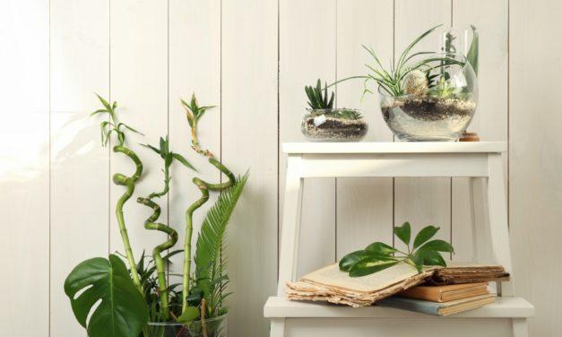 Giv trappestigen nyt liv: 3 spændende DIY-ideer!