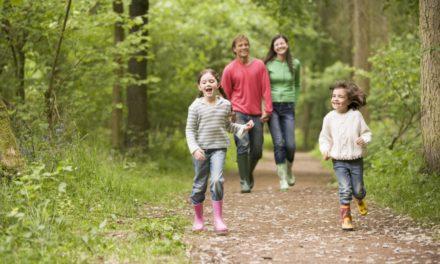 3 kreative og lærerige udendørsaktiviteter med børnene