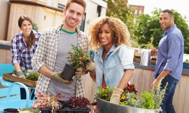 Lav en ombygningsbegivenhed i haven med vennerne